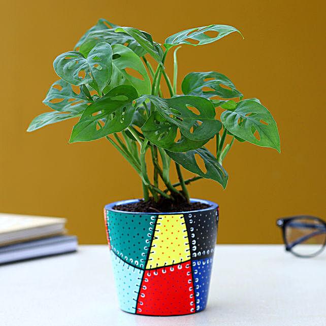 Monstera Delicios Plant In Patch Stitch Multicoloured Pot