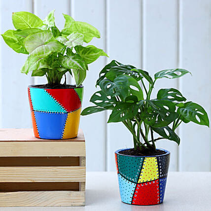 Set Of 2 Green Plants In Patch Stitch Multicoloured Pots:Hand Painted planters