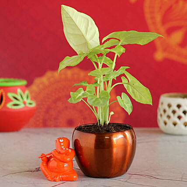 Syngonium Plant Metal Pot & Flute Ganesha Idol:Send Diwali Gifts to Bengaluru