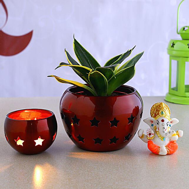 Sansevieria Plant With Table Top Pot & Ganesha Idol