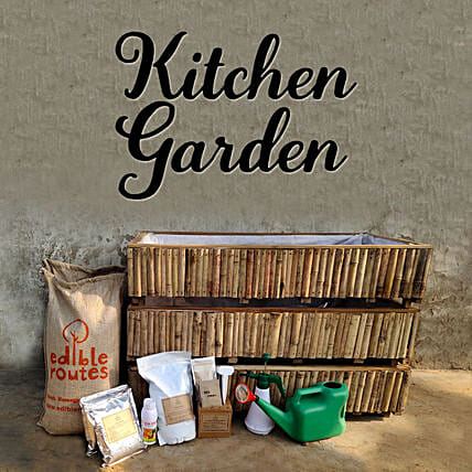 Veggie Kitchen Garden With Bamboo Planters:Send Organic Seeds