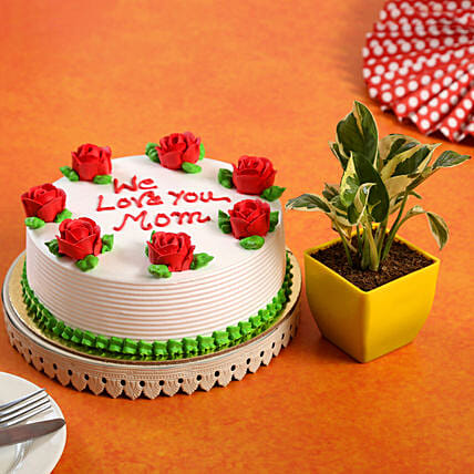 We Love You Mom Cake White Pothos Plant Combo