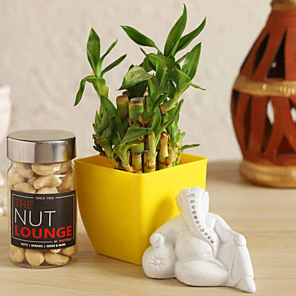 White Ganesha With Lucky Bamboo & Cashews:Send Lucky Bamboo to Lucknow