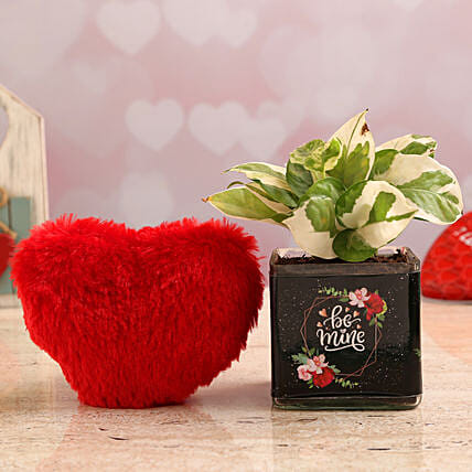 White Pothos Plant In Be Mine Vase & Red Heart:Soft toys to Gurgaon