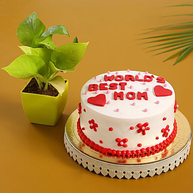 Worlds Best Mom Cake Money Plant Combo
