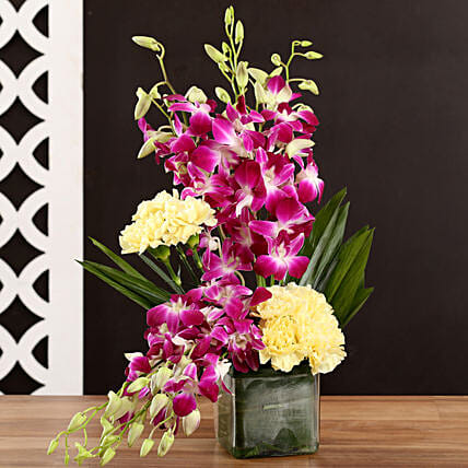 Buy Online Carnation and Orchids