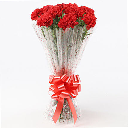 10 Elegant Red Carnations Bouquet