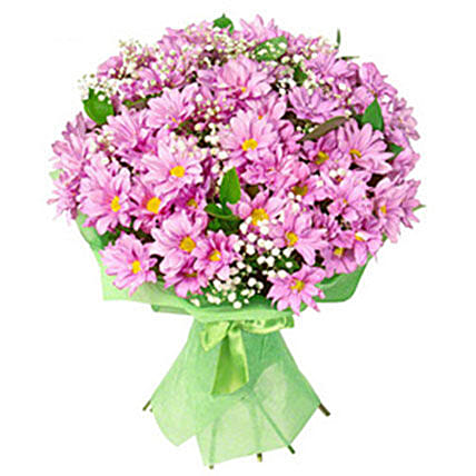 Daily Blush:Send Carnation Flower to Philippines