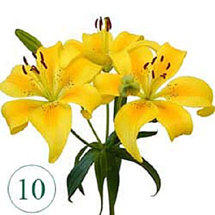 10 Blooms of Yellow Lilies QAT