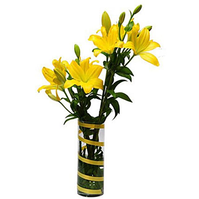 6 Lilies For Friendship QAT
