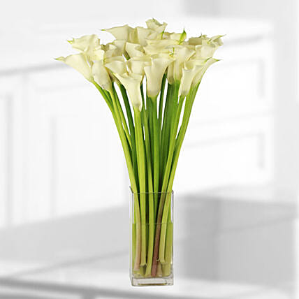 calla lilies vase online:Lilies  Delivery in Qatar