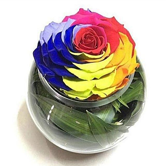 Preserved Rainbow Rose In Round Vase:Send Forever Roses to Saudi-Arabia