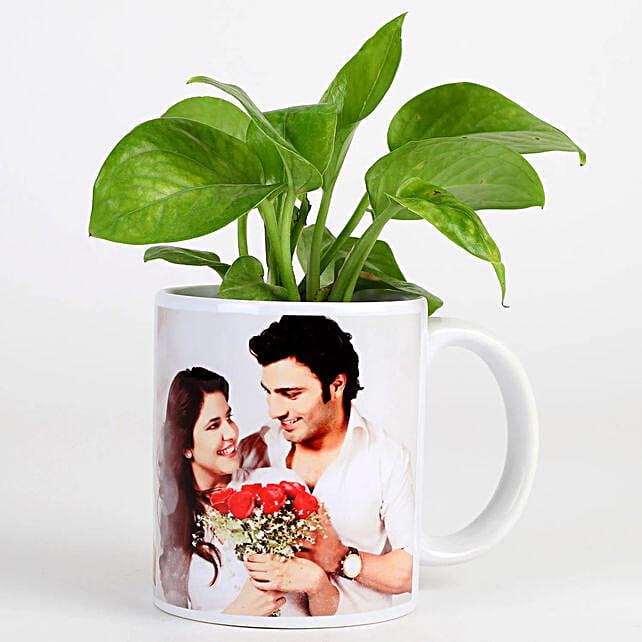 Picture White Mug Money Plant Combo
