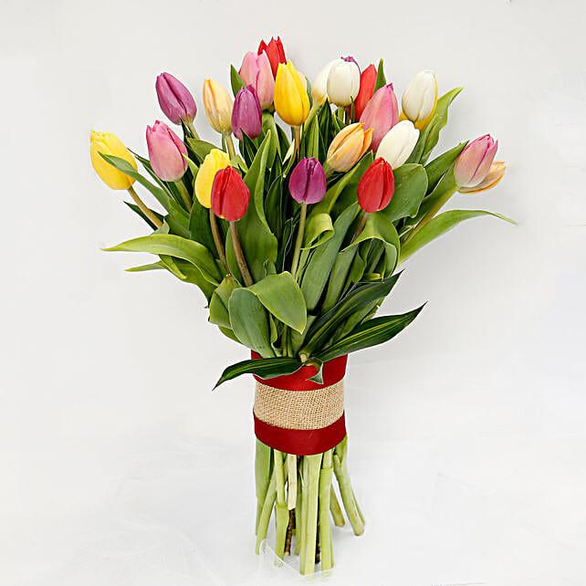 25 Vibrant Tulips Bunch