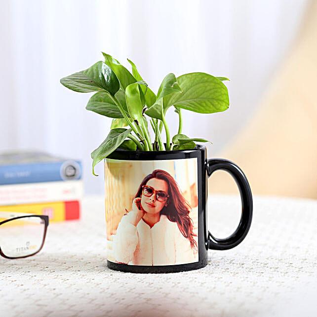 Money Plant Black Picture Mug Combo