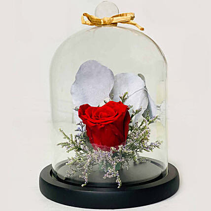 Single Red Forever Rose In Glass Dome for Valentines