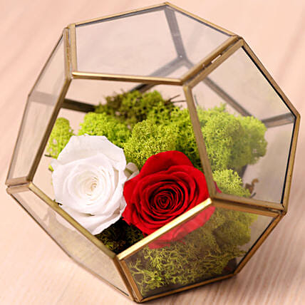Red And White Roses In Designer Base:Flower Delivery Singapore