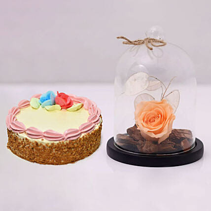 Peach Forever Rose In Glass Dome & Mini Cheese Cake
