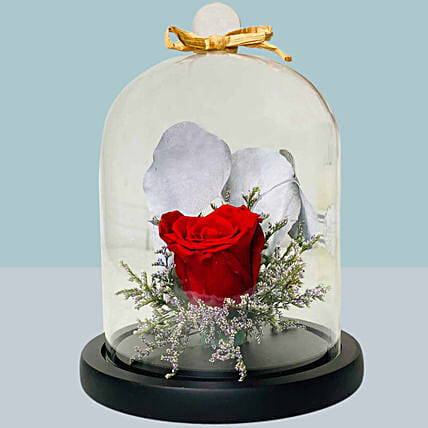 Forever Rose In Glass Dome:Flower Delivery Singapore