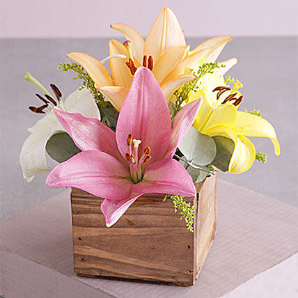 Wooden Variety Lily Blossoms:Send Gifts to South Africa