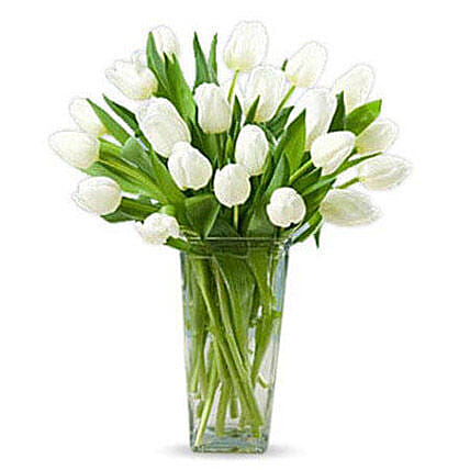 20 White Tulips:Send Tulip Flowers to UAE