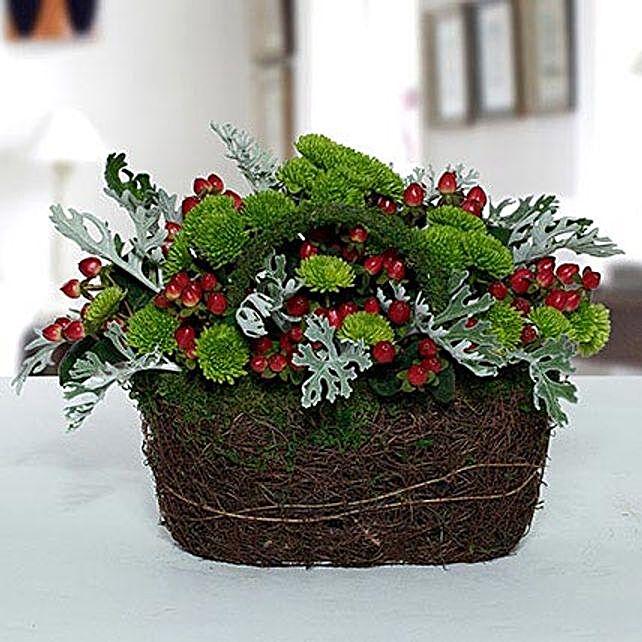 Hypnotic Chrysanthemum N Hypericum Christmas Flower Basket