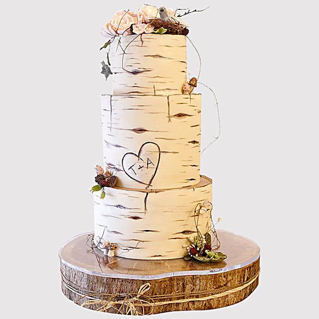 Pretty 3 Layered Engagement Cake
