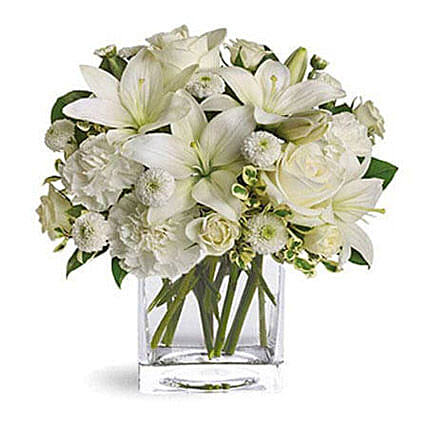 White Beauty:Send Carnation Flower to UAE