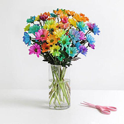Rainbow Chrysanthemum Bunch