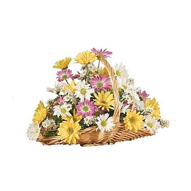 A Daisy A Day flowers birthday