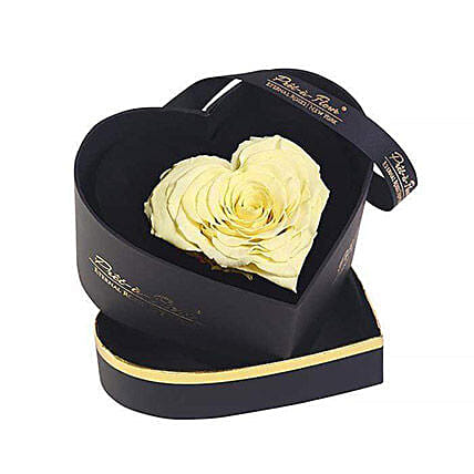 Chelsea Eternal Rose Black Box