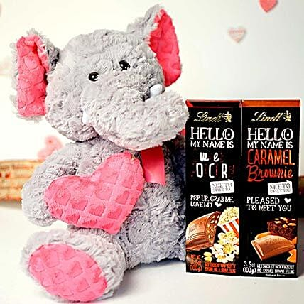 Chocolates With Soft Toy