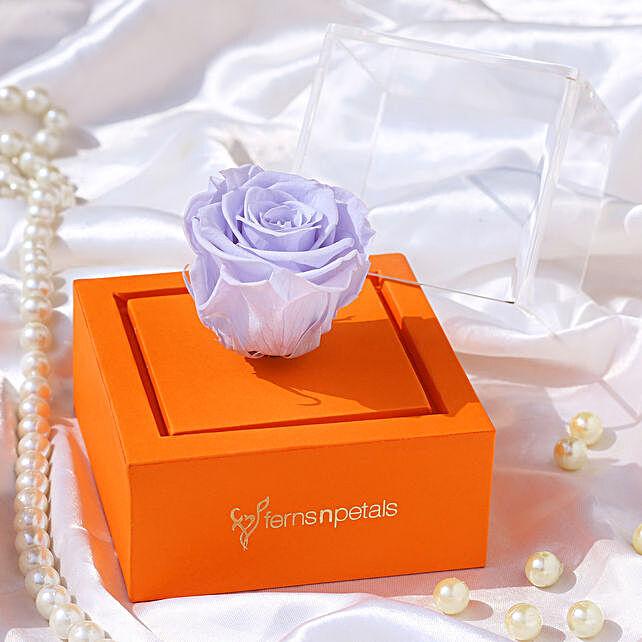 blue forever rose inside box online