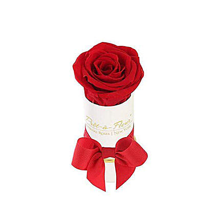 Liberty Scarlet Eternal Rose Gift Box