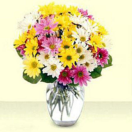 Mixed Daisy Bouquet flowers birthday