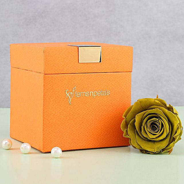 Olive Green Forever Rose in Orange Box