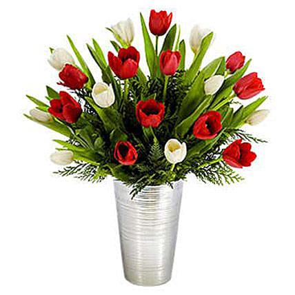 Red And White Tulips Beauty:Send Tulip Flowers to USA