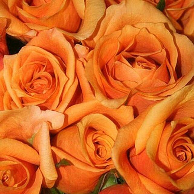 50 Orange Roses