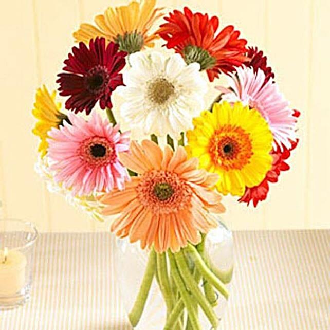 Multi Color Gerberas in Vase
