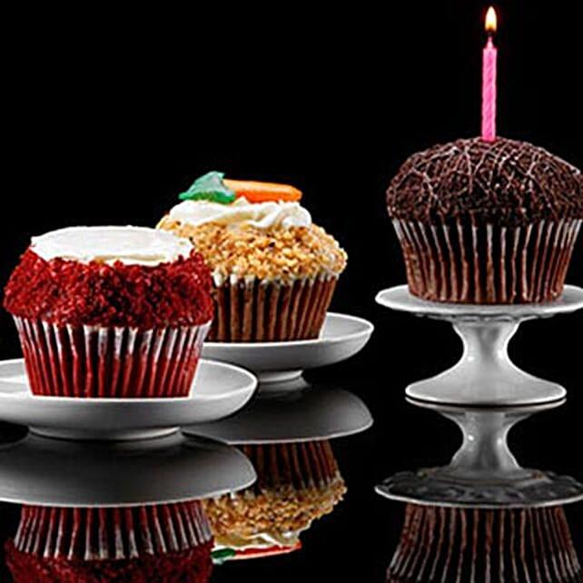 CRUMBS Signature Gourmet Cupcakes Assorted