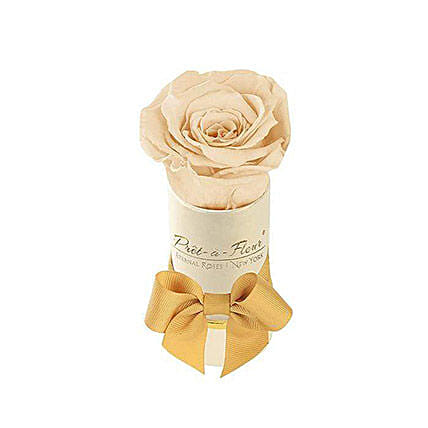 Liberty Eternal Rose Cream Gift Box:Send Forever Roses to USA
