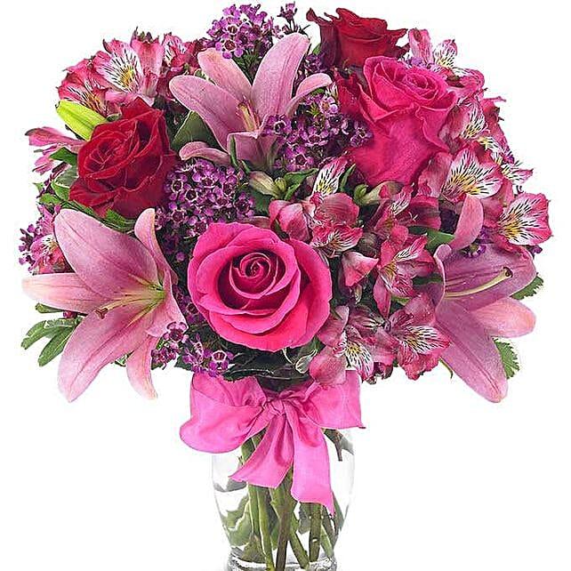 Sweet Celebration Flowers:Send Carnation Flower to USA