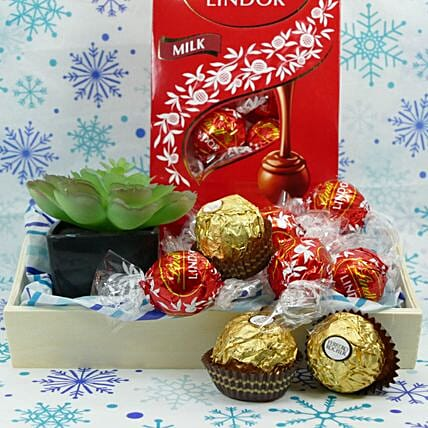 New Year Chocolate And Plant Gift