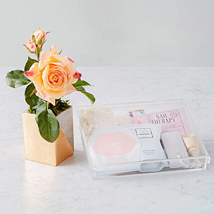 Mothers Day Special Rosa Faux Flowers And Spa Hamper:Send Gifts for Mother in USA