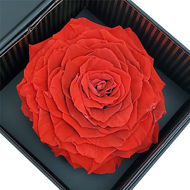 Eternal Red Rose With Ferrero Rocher Chocolates