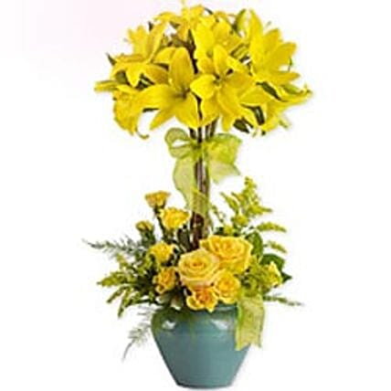 Lily Topiary-wes:Gifts  to West Indies